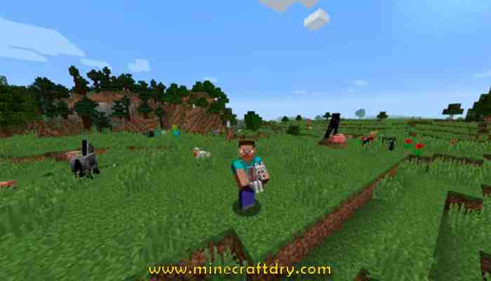 mod minecraft 1.16.4 carry On
