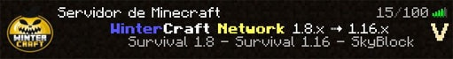 server de minecraft survival