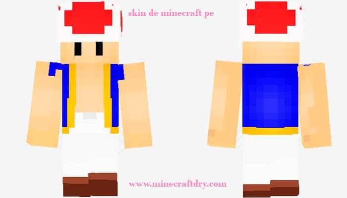 skin de minecraft pe de mujer