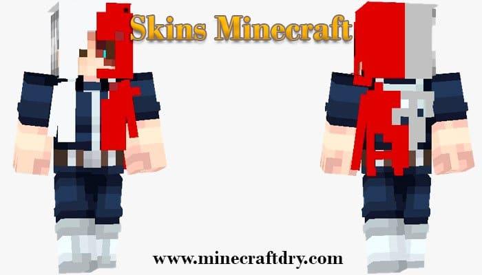 install minecraft skin